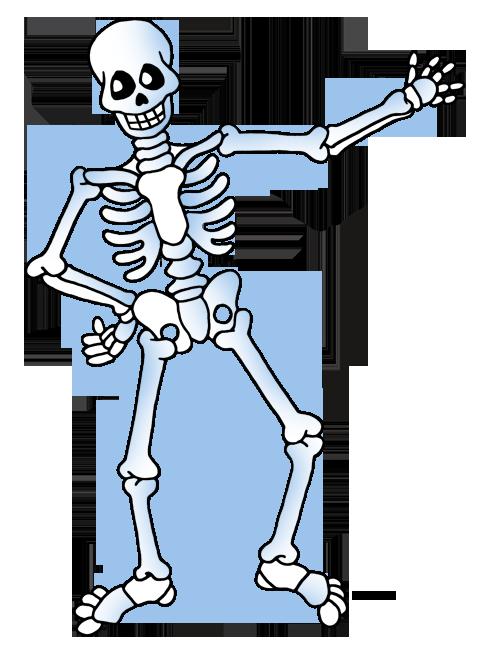 Science Clip Art by Phillip Martin, Skeleton